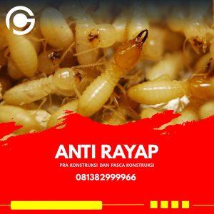 Jasa Anti Rayap di Semarang