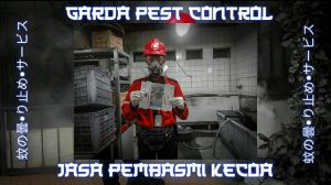 Jasa Pembasmi Kecoa di Cirebon
