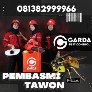 Jasa Pembasmi Tawon Bandung